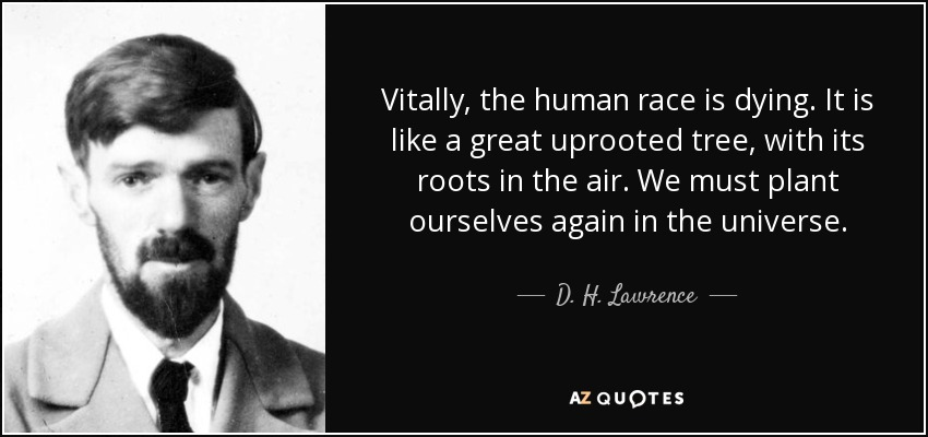 Vitally, the human race is dying. It is like a great uprooted tree, with its roots in the air. We must plant ourselves again in the universe. - D. H. Lawrence