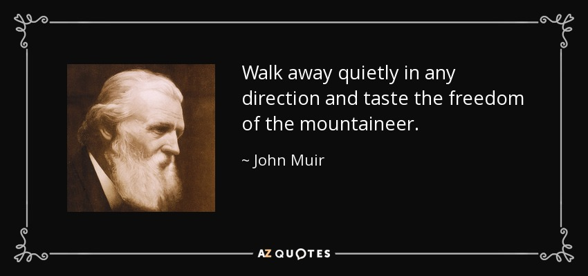 Walk away quietly in any direction and taste the freedom of the mountaineer. - John Muir