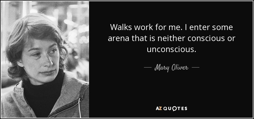 Walks work for me. I enter some arena that is neither conscious or unconscious. - Mary Oliver