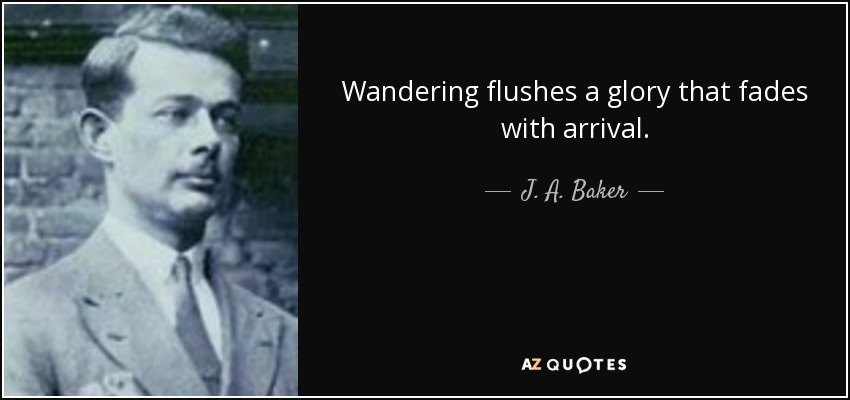 Wandering flushes a glory that fades with arrival. - J. A. Baker