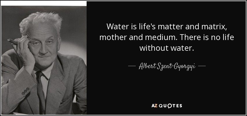 Water is life's matter and matrix, mother and medium. There is no life without water. - Albert Szent-Gyorgyi