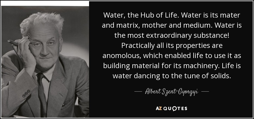 Water, the Hub of Life. Water is its mater and matrix, mother and medium. Water is the most extraordinary substance! Practically all its properties are anomolous, which enabled life to use it as building material for its machinery. Life is water dancing to the tune of solids. - Albert Szent-Gyorgyi