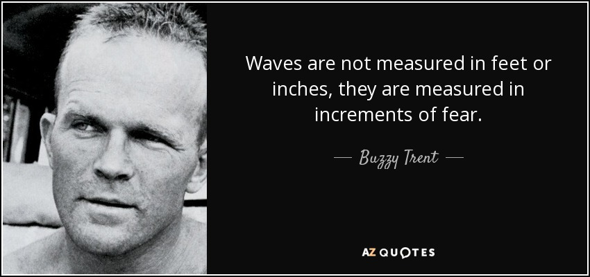 Waves are not measured in feet or inches, they are measured in increments of fear. - Buzzy Trent