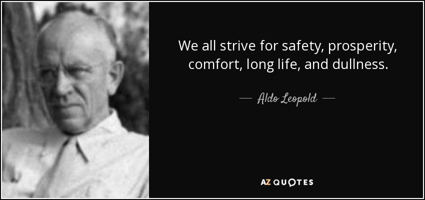 We all strive for safety, prosperity, comfort, long life, and dullness. - Aldo Leopold