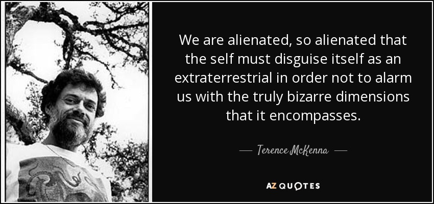 We are alienated, so alienated that the self must disguise itself as an extraterrestrial in order not to alarm us with the truly bizarre dimensions that it encompasses. - Terence McKenna
