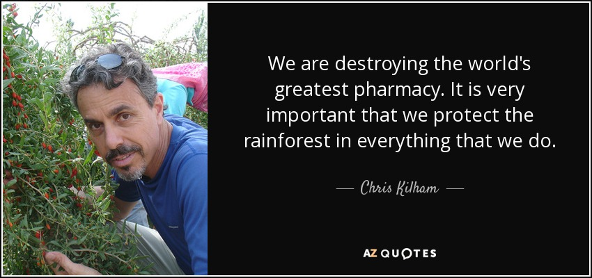 We are destroying the world's greatest pharmacy. It is very important that we protect the rainforest in everything that we do. - Chris Kilham