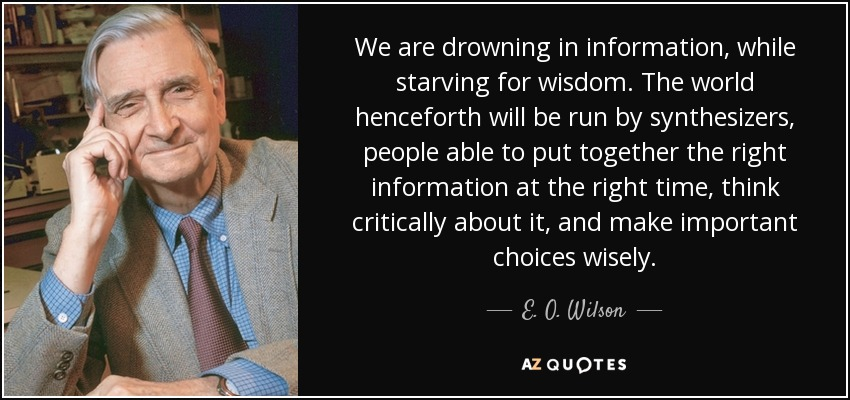We are drowning in information, while starving for wisdom. The world henceforth will be run by synthesizers, people able to put together the right information at the right time, think critically about it, and make important choices wisely. - E. O. Wilson