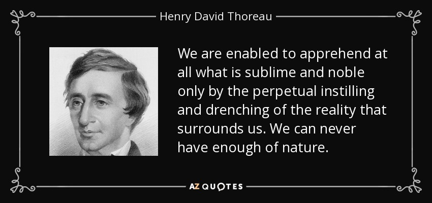 We are enabled to apprehend at all what is sublime and noble only by the perpetual instilling and drenching of the reality that surrounds us. We can never have enough of nature. - Henry David Thoreau