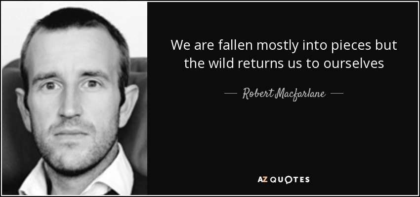 We are fallen mostly into pieces but the wild returns us to ourselves - Robert Macfarlane