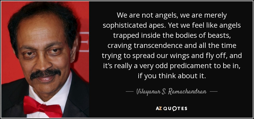 We are not angels, we are merely sophisticated apes. Yet we feel like angels trapped inside the bodies of beasts, craving transcendence and all the time trying to spread our wings and fly off, and it's really a very odd predicament to be in, if you think about it. - Vilayanur S. Ramachandran