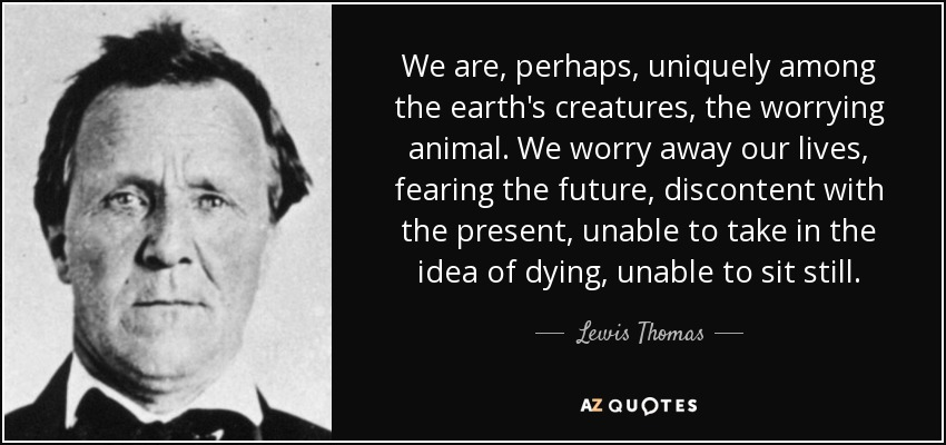 We are, perhaps, uniquely among the earth's creatures, the worrying animal. We worry away our lives, fearing the future, discontent with the present, unable to take in the idea of dying, unable to sit still. - Lewis Thomas