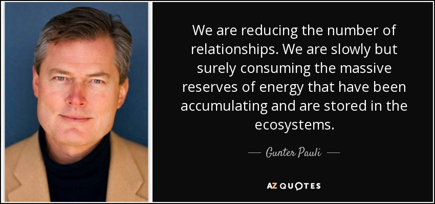 We are reducing the number of relationships. We are slowly but surely consuming the massive reserves of energy that have been accumulating and are stored in the ecosystems. - Gunter Pauli