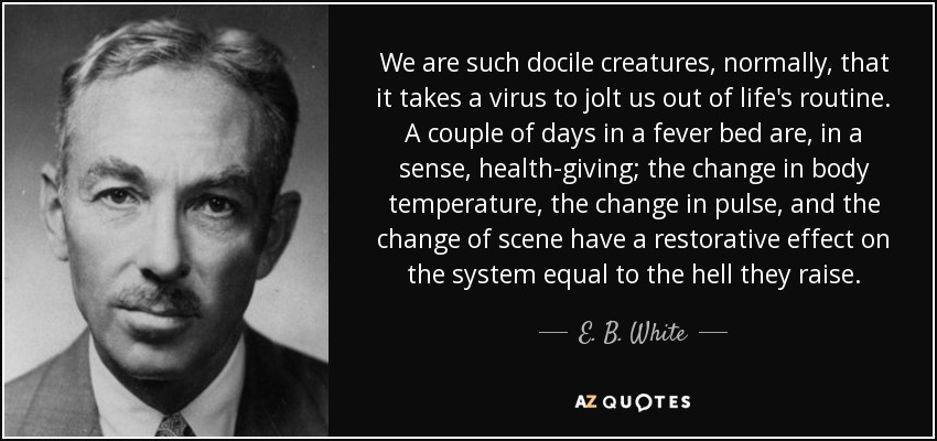 We are such docile creatures, normally, that it takes a virus to jolt us out of life's routine. A couple of days in a fever bed are, in a sense, health-giving; the change in body temperature, the change in pulse , and the change of scene have a restorative effect on the system equal to the hell they raise. - E. B. White