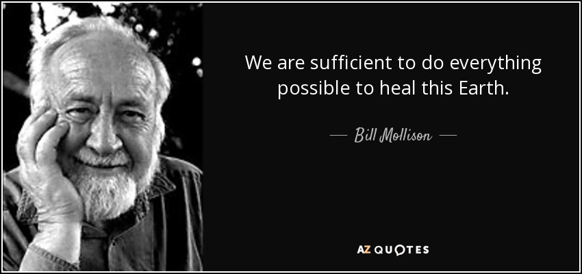 We are sufficient to do everything possible to heal this Earth. - Bill Mollison