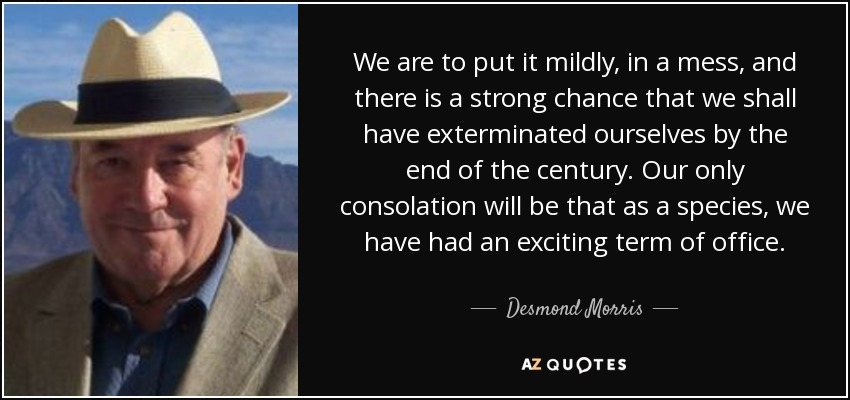 We are to put it mildly, in a mess, and there is a strong chance that we shall have exterminated ourselves by the end of the century. Our only consolation will be that as a species, we have had an exciting term of office. - Desmond Morris