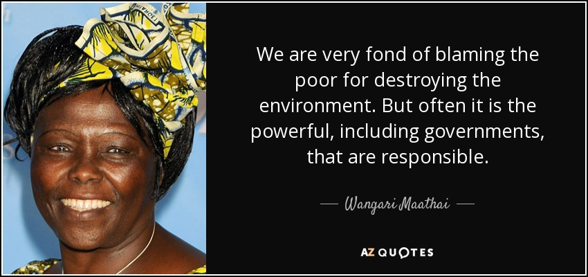We are very fond of blaming the poor for destroying the environment. But often it is the powerful, including governments, that are responsible. - Wangari Maathai