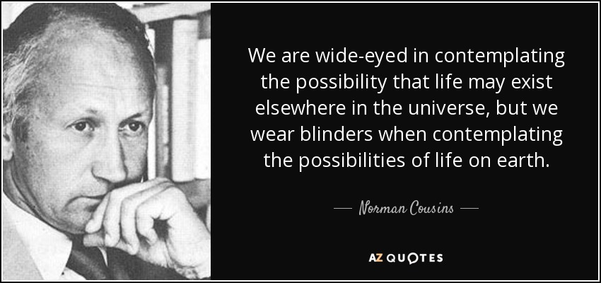 Contemplating Life Quotes Interesting Norman Cousins Quote We Are Wideeyed In Contemplating The