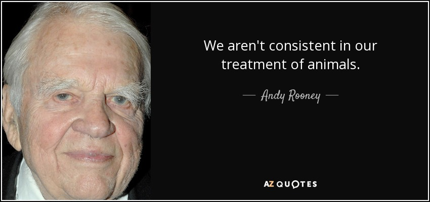 We aren't consistent in our treatment of animals. - Andy Rooney