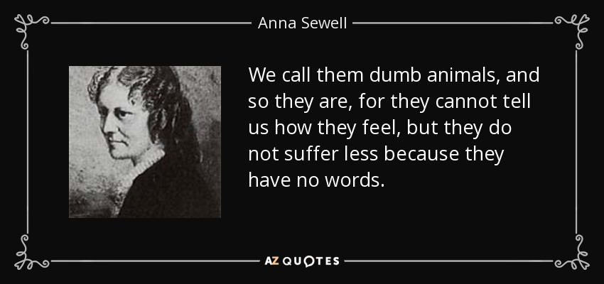 We call them dumb animals, and so they are, for they cannot tell us how they feel, but they do not suffer less because they have no words. - Anna Sewell