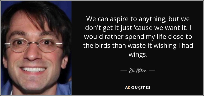 We can aspire to anything, but we don't get it just 'cause we want it. I would rather spend my life close to the birds than waste it wishing I had wings. - Eli Attie
