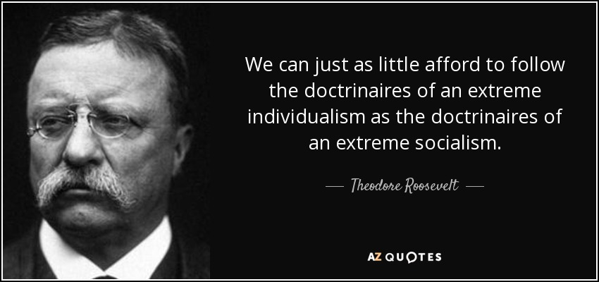 We can just as little afford to follow the doctrinaires of an extreme individualism as the doctrinaires of an extreme socialism. - Theodore Roosevelt
