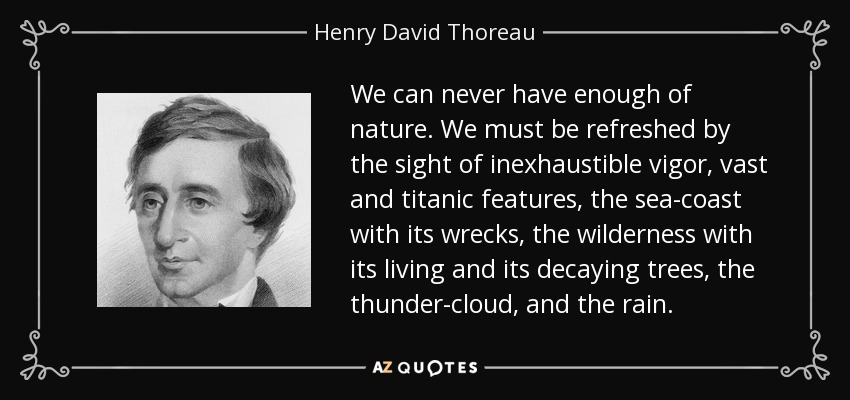 We can never have enough of nature. We must be refreshed by the sight of inexhaustible vigor, vast and titanic features, the sea-coast with its wrecks, the wilderness with its living and its decaying trees, the thunder-cloud, and the rain. - Henry David Thoreau