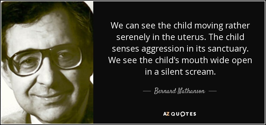 We can see the child moving rather serenely in the uterus. The child senses aggression in its sanctuary. We see the child's mouth wide open in a silent scream. - Bernard Nathanson