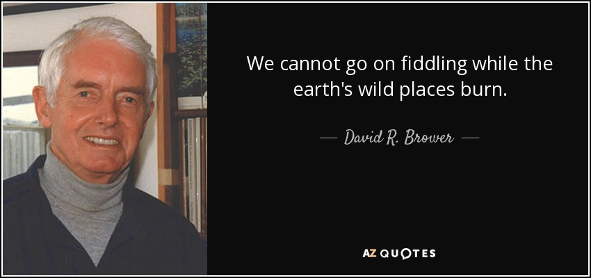 We cannot go on fiddling while the earth's wild places burn.... - David R. Brower