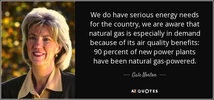 We do have serious energy needs for the country, we are aware that natural gas is especially in demand because of its air quality benefits: 90 percent of new power plants have been natural gas-powered. - Gale Norton