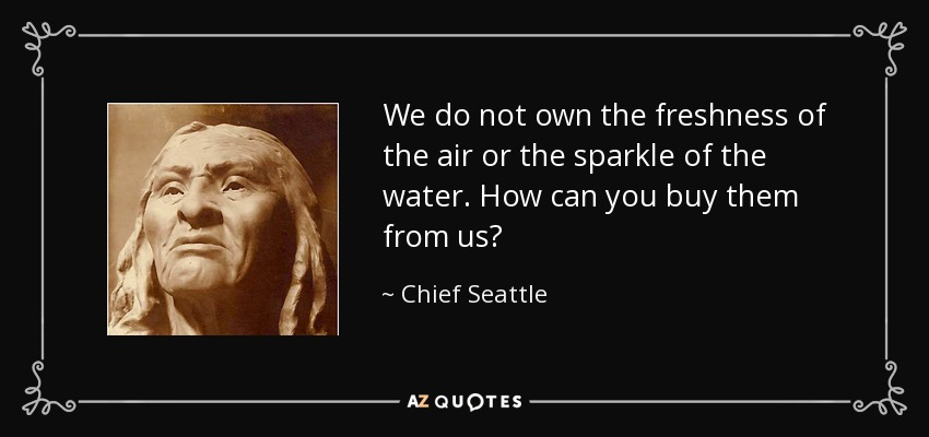 We do not own the freshness of the air or the sparkle of the water. How can you buy them from us? - Chief Seattle