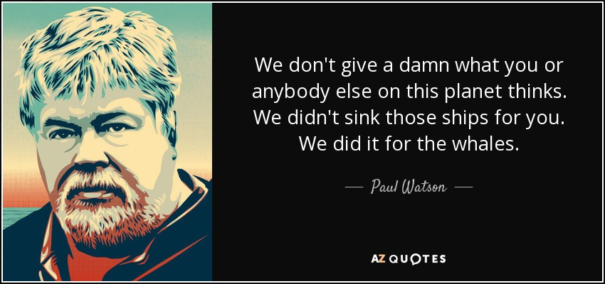 We don't give a damn what you or anybody else on this planet thinks. We didn't sink those ships for you. We did it for the whales. - Paul Watson