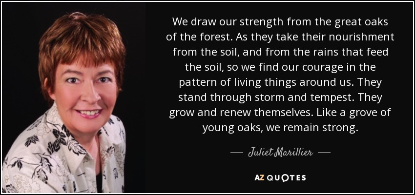 We draw our strength from the great oaks of the forest. As they take their nourishment from the soil, and from the rains that feed the soil, so we find our courage in the pattern of living things around us. They stand through storm and tempest. They grow and renew themselves. Like a grove of young oaks, we remain strong. - Juliet Marillier