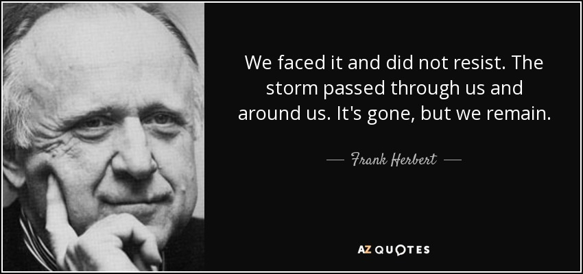 We faced it and did not resist. The storm passed through us and around us. It's gone, but we remain. - Frank Herbert