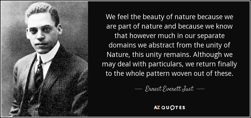 Ernest Everett Just Quote We Feel The Beauty Of Nature