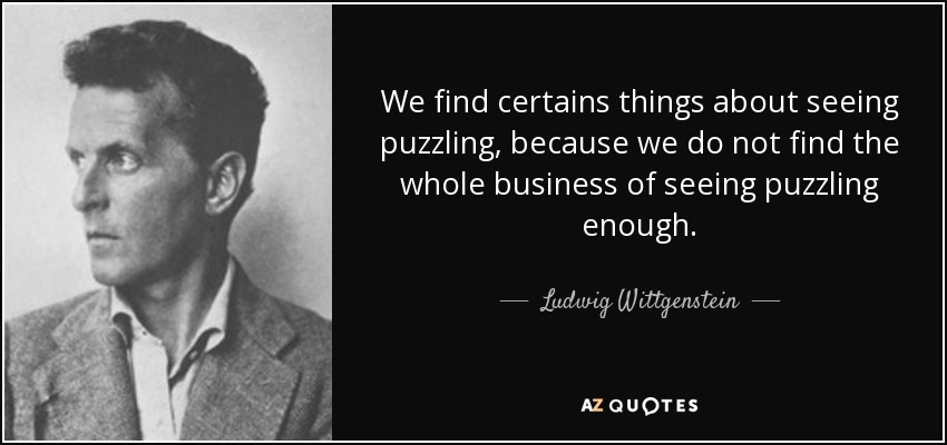 We find certains things about seeing puzzling, because we do not find the whole business of seeing puzzling enough. - Ludwig Wittgenstein
