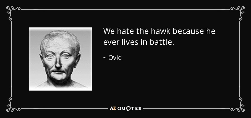 We hate the hawk because he ever lives in battle. - Ovid