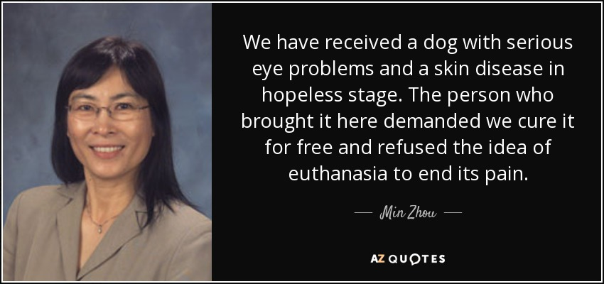 We have received a dog with serious eye problems and a skin disease in hopeless stage. The person who brought it here demanded we cure it for free and refused the idea of euthanasia to end its pain. - Min Zhou
