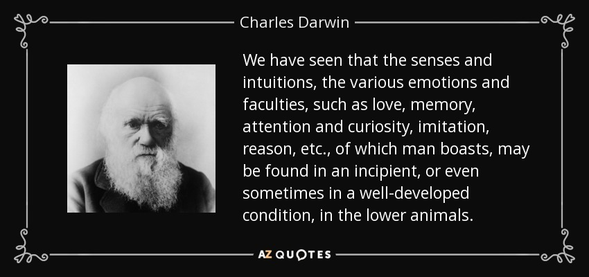 We have seen that the senses and intuitions, the various emotions and faculties, such as love, memory, attention and curiosity, imitation, reason, etc., of which man boasts, may be found in an incipient, or even sometimes in a well-developed condition, in the lower animals. - Charles Darwin