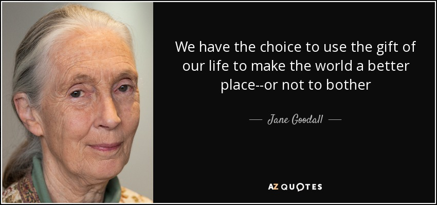 We have the choice to use the gift of our life to make the world a better place--or not to bother - Jane Goodall
