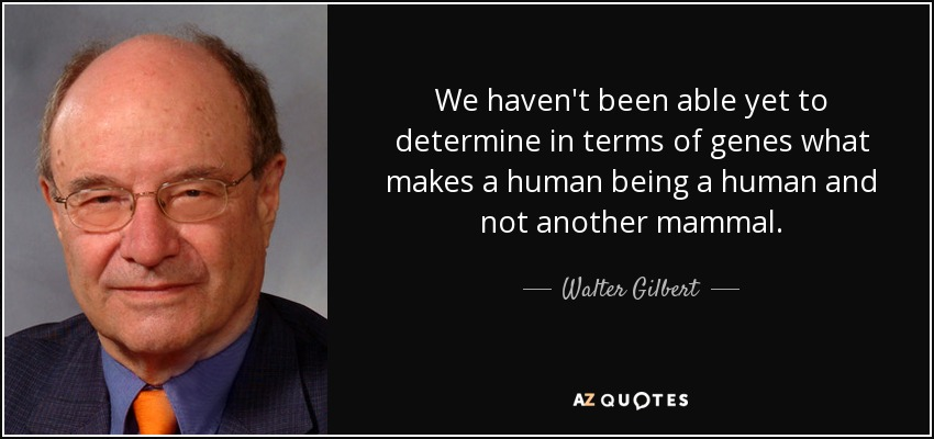 We haven't been able yet to determine in terms of genes what makes a human being a human and not another mammal. - Walter Gilbert