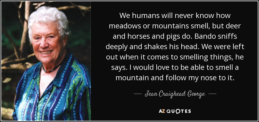 We humans will never know how meadows or mountains smell, but deer and horses and pigs do. Bando sniffs deeply and shakes his head. We were left out when it comes to smelling things, he says. I would love to be able to smell a mountain and follow my nose to it. - Jean Craighead George