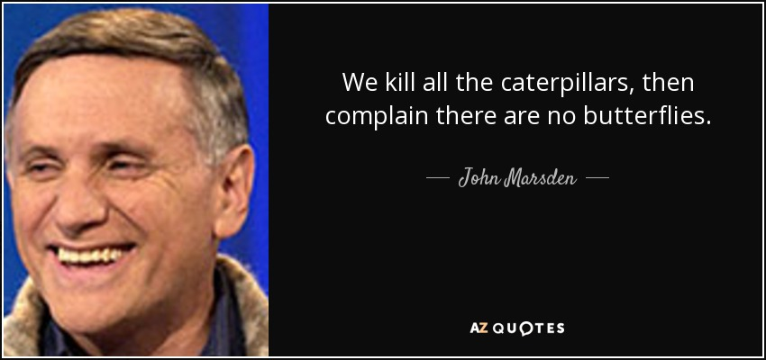 We kill all the caterpillars, then complain there are no butterflies. - John Marsden