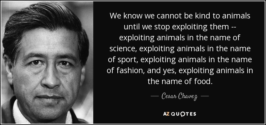 We know we cannot be kind to animals until we stop exploiting them -- exploiting animals in the name of science, exploiting animals in the name of sport, exploiting animals in the name of fashion, and yes, exploiting animals in the name of food. - Cesar Chavez