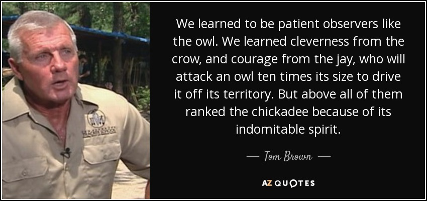 We learned to be patient observers like the owl. We learned cleverness from the crow, and courage from the jay, who will attack an owl ten times its size to drive it off its territory. But above all of them ranked the chickadee because of its indomitable spirit. - Tom Brown, Jr.