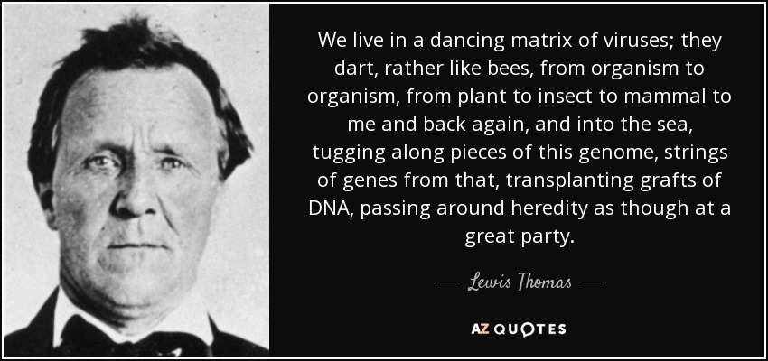 We live in a dancing matrix of viruses; they dart, rather like bees, from organism to organism, from plant to insect to mammal to me and back again, and into the sea, tugging along pieces of this genome, strings of genes from that, transplanting grafts of DNA, passing around heredity as though at a great party. - Lewis Thomas