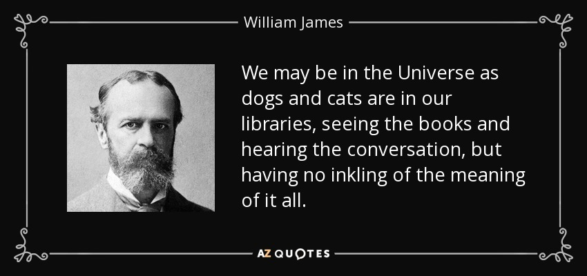 We may be in the Universe as dogs and cats are in our libraries, seeing the books and hearing the conversation, but having no inkling of the meaning of it all. - William James