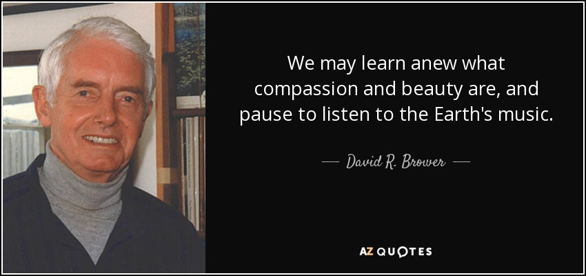 We may learn anew what compassion and beauty are, and pause to listen to the Earth's music. - David R. Brower