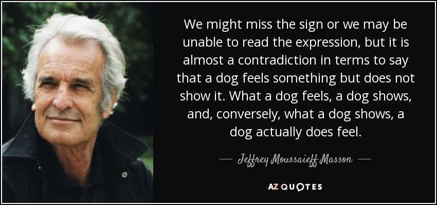 We might miss the sign or we may be unable to read the expression, but it is almost a contradiction in terms to say that a dog feels something but does not show it. What a dog feels, a dog shows, and, conversely, what a dog shows, a dog actually does feel. - Jeffrey Moussaieff Masson