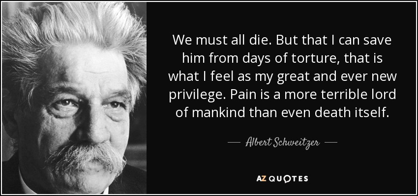We must all die. But that I can save him from days of torture, that is what I feel as my great and ever new privilege. Pain is a more terrible lord of mankind than even death itself. - Albert Schweitzer