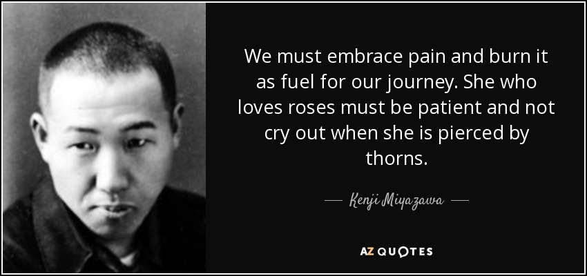 We must embrace pain and burn it as fuel for our journey. She who loves roses must be patient and not cry out when she is pierced by thorns. - Kenji Miyazawa